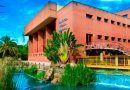 El mercadillo de verano de la biblioteca de Arroyo de la Miel destinará su recaudación a Cudeca