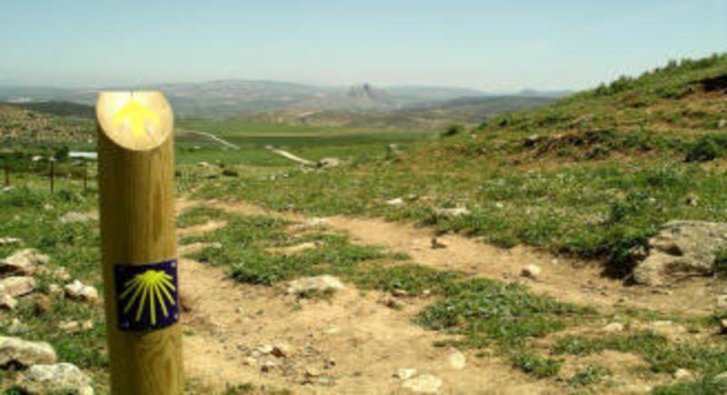 Almogía, su día de la almendra y la leyenda del Olivo de las Ánimas del Purgatorio en #Pueblosdemalaga