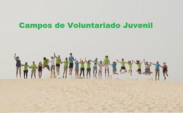 voluntariado juvenil, lanzarote