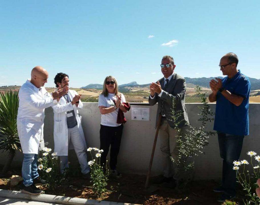 plantación de un olivo en el acto de homenaje a los donantes y sus familias de ALCER MALAGA y el Hospital de Ronda